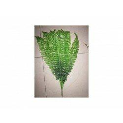 Листья папоротника 303